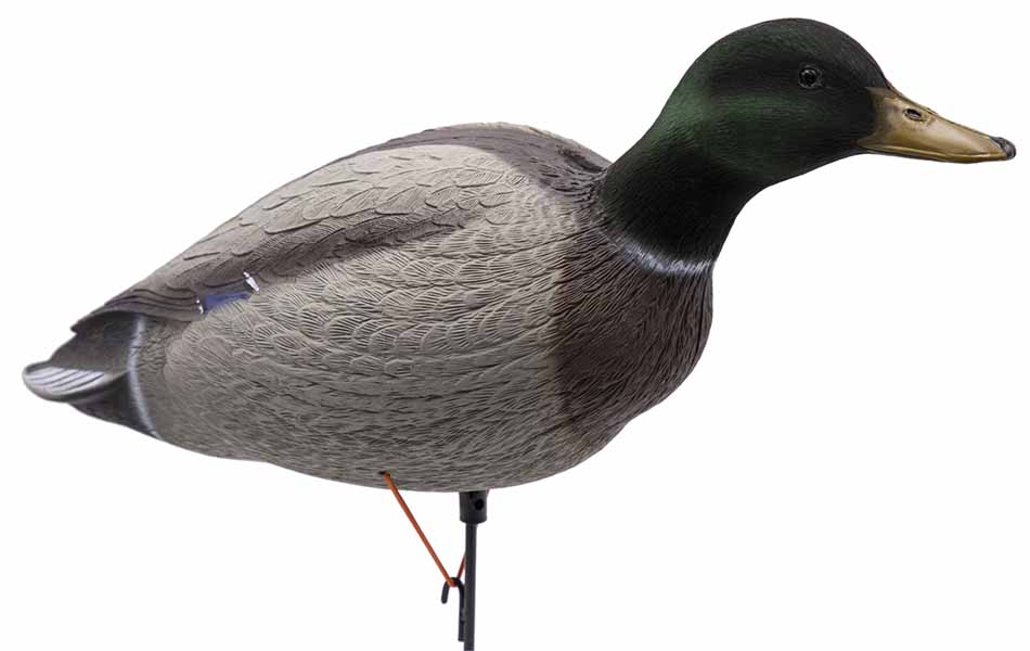 Big Foot Fully Body Mallards with 12-Slot Decoy Bag and Flocked Headed Drakes, 12 Pack