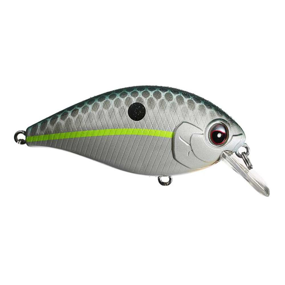 Evergreen SH-3 Crankbait_Queen Shad.JPG