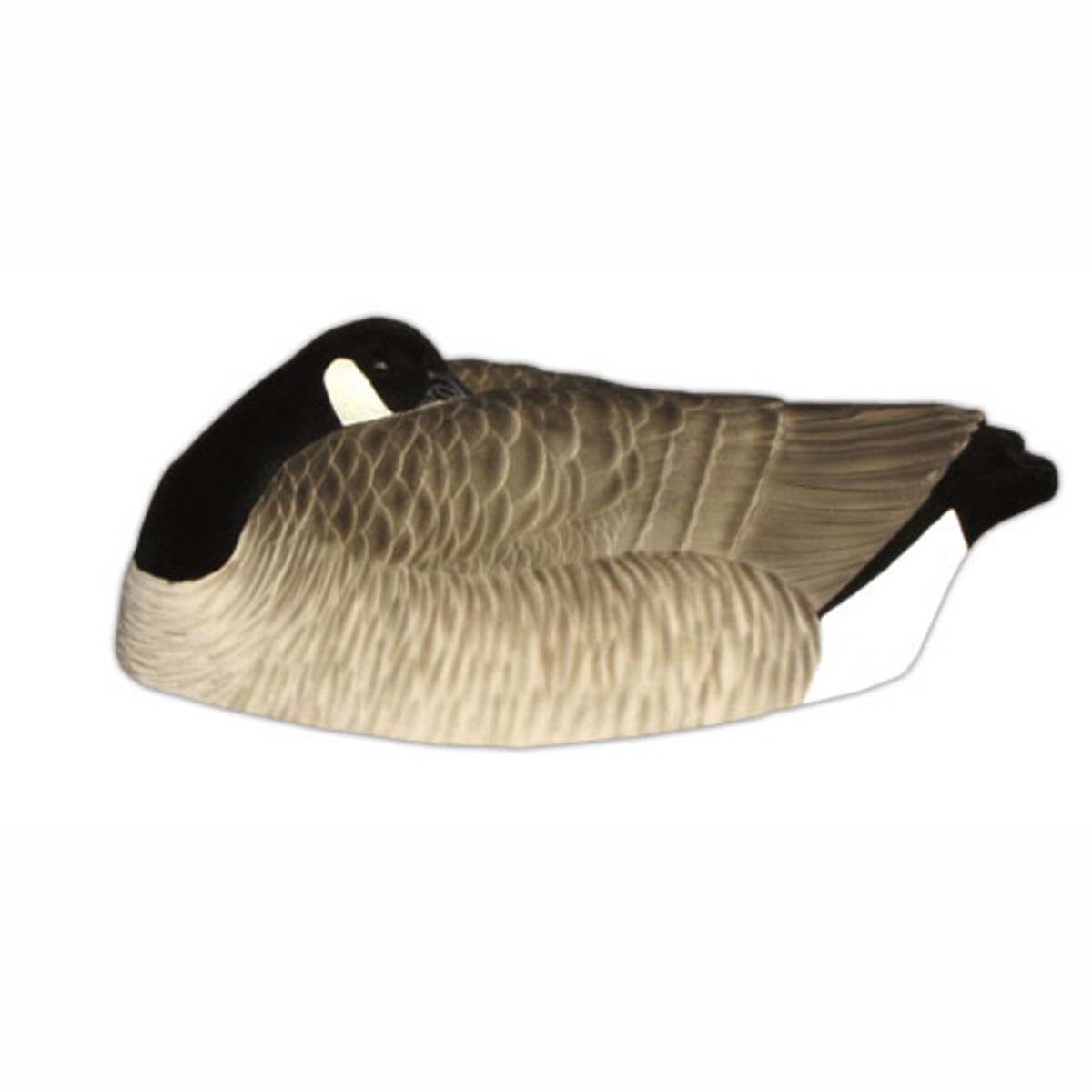 Dakota Decoy Painted One Piece Canada Sleeper Shell Decoys, 12-Pack