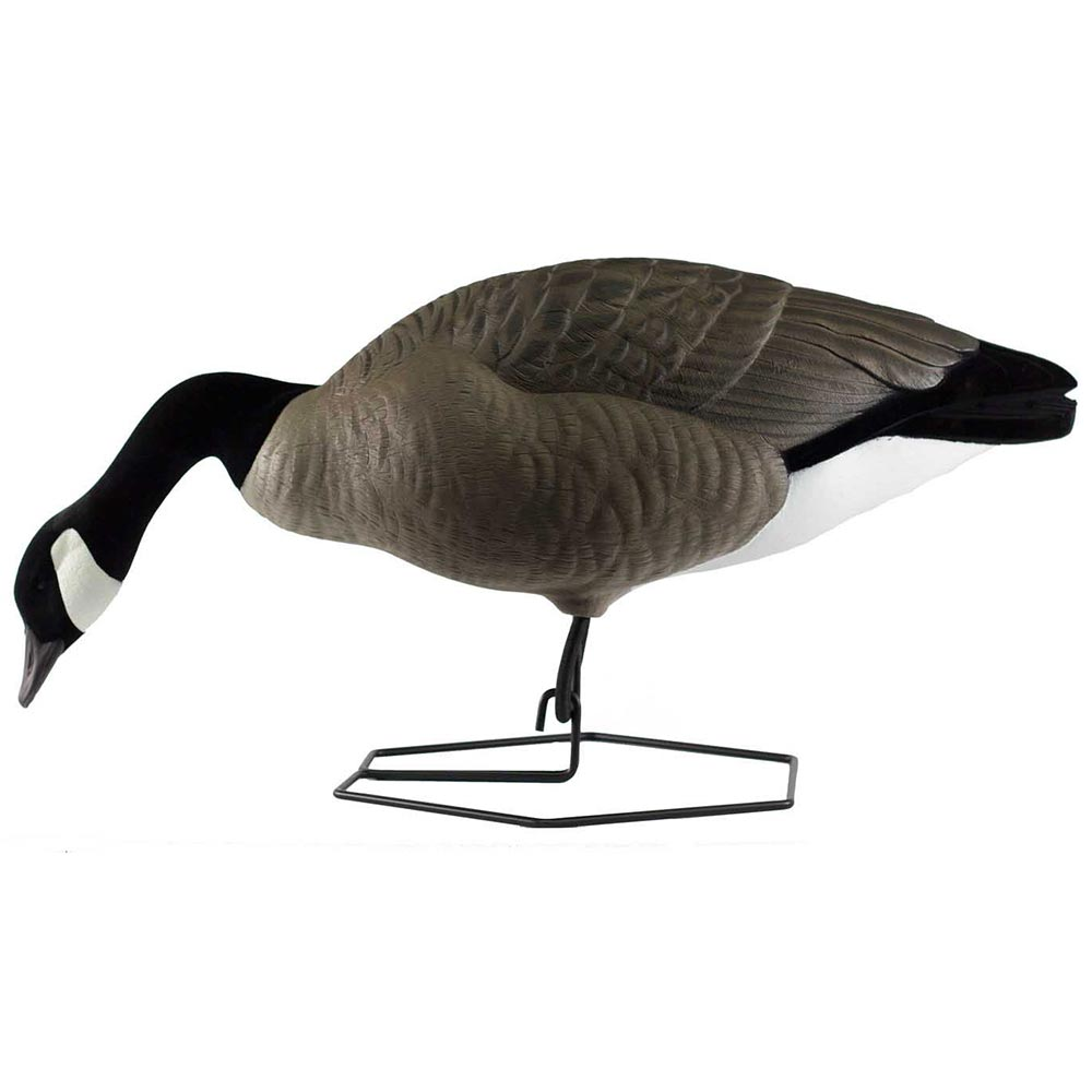Rogue Series Goose Feeder Decoys, 6 Pack_1.jpg