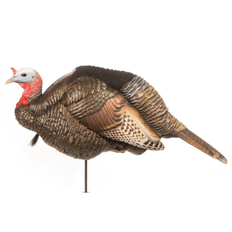 Dave Smith Decoys 3/4 Strut Jake Turkey Decoy_1.jpg