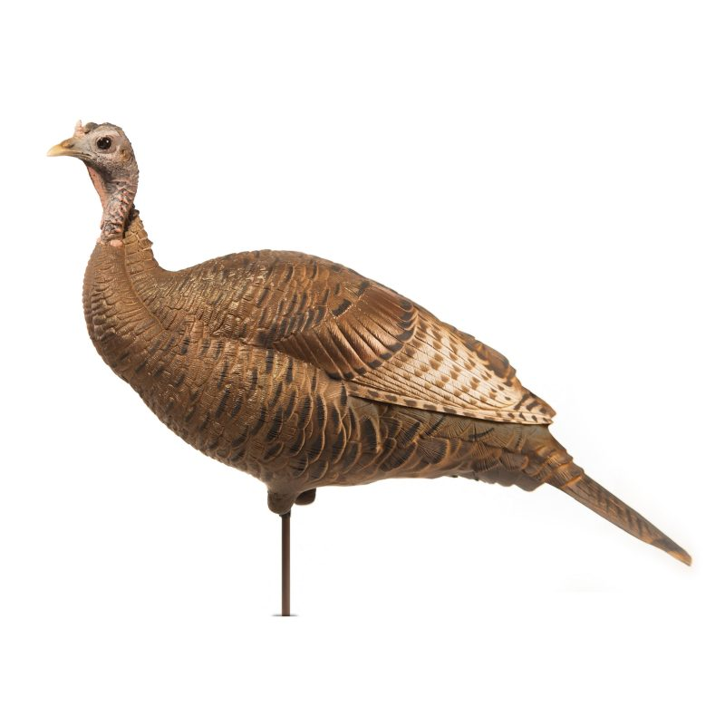 Dave Smith Decoys Upright Hen Turkey Decoy_1.jpg