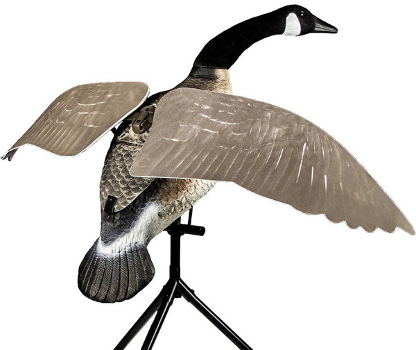 Lucky Flapper Canada Goose with Remote
