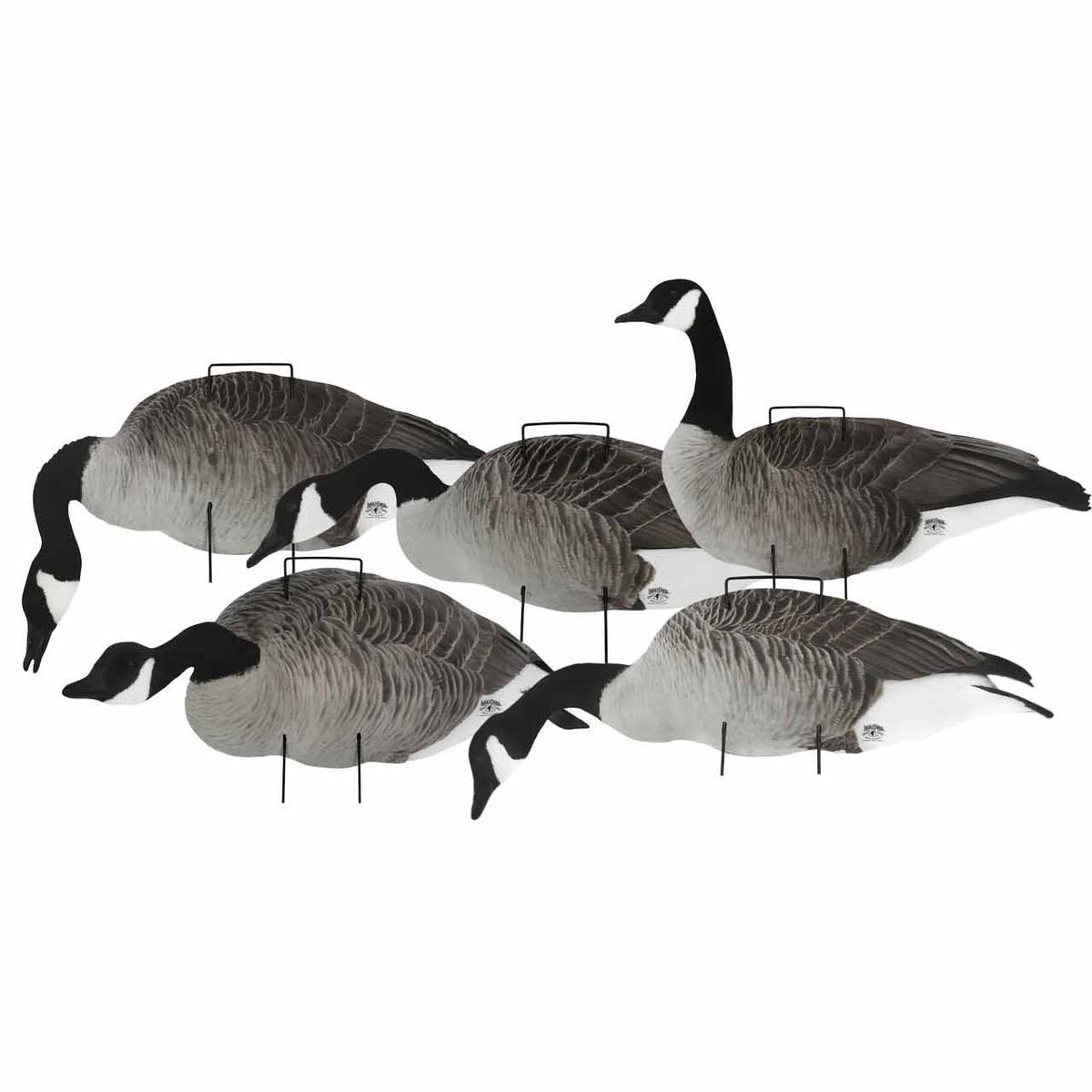 Lucky Canada Goose Silhouettes, 12 Pack