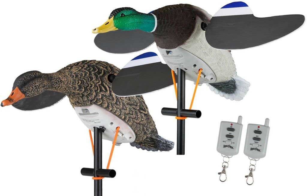 Lucky Duck Lucky Twin Pack with Remotes