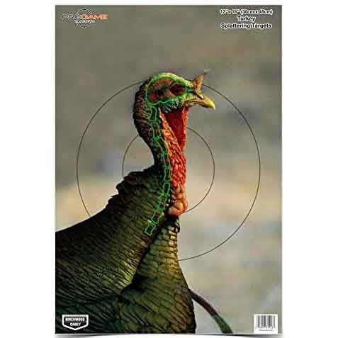 Birchwood Casey Pregame Turkey Patterning Target 12 x 18 Pack of 8_1.jpg