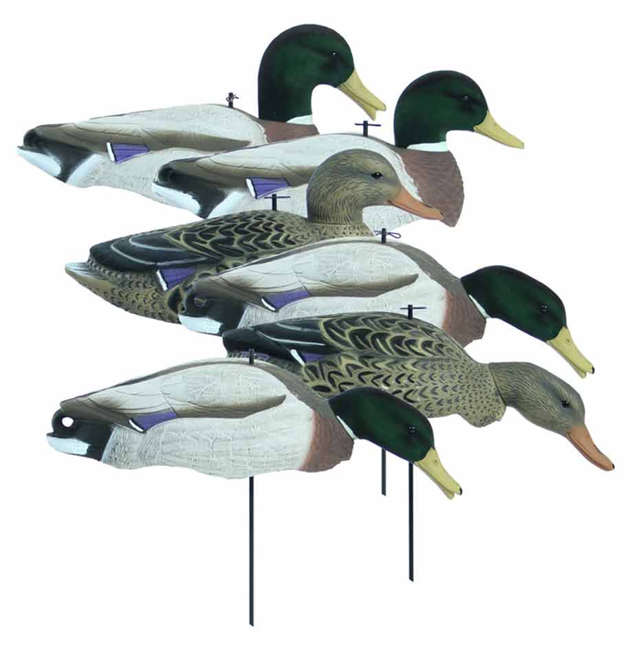 Higdon Magnum Full Form Shell Mallards, Variety 6 Pack with Flocked Heads