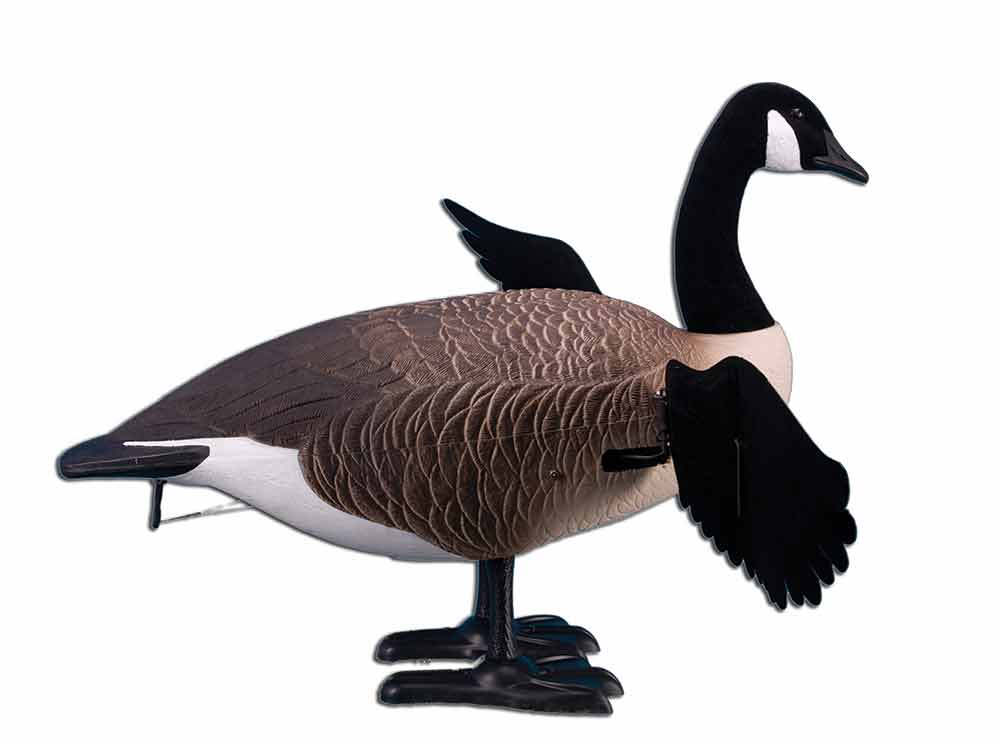 Higdon Decoys Finisher Flapper, Full Body, Canada (Single)_1.jpg