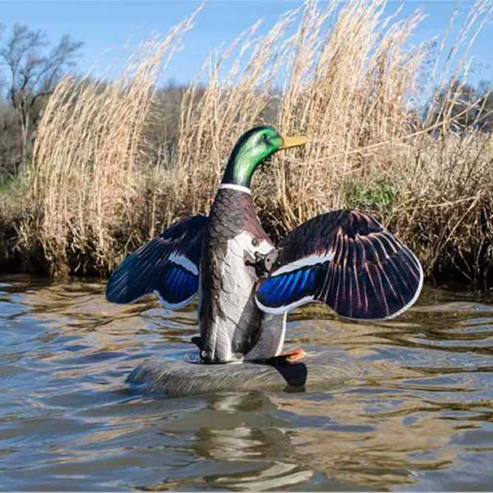 Higdon Outdoors Mallard Drake XS Floater Flasher Decoy with 12V Battery