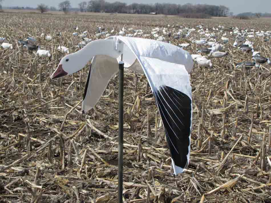 Heavy Hauler Cupped and Committed Snow Goose Flyer Decoys - 6 Pack_1.jpg