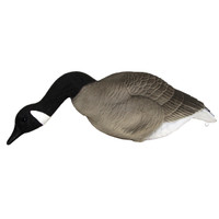 Mayhem Decoys Big Honker Canada Full Body Collapsible Decoys 6 Pack With Flocked Heads