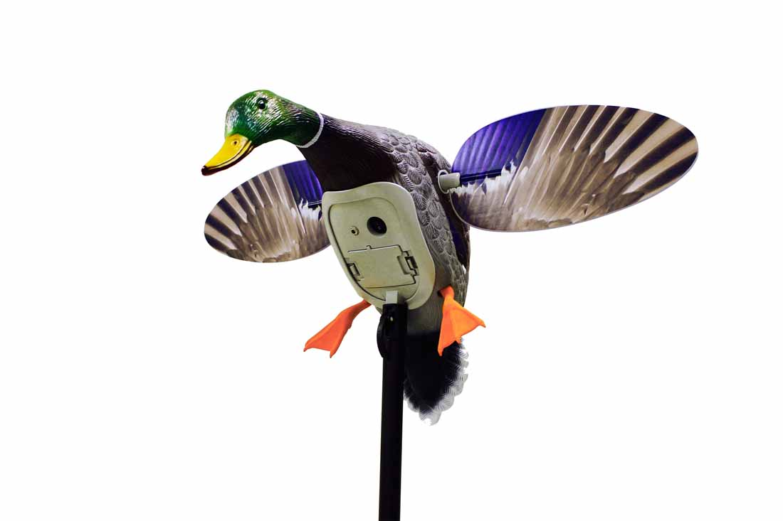 MOJO King Mallard with Remote_1.jpg