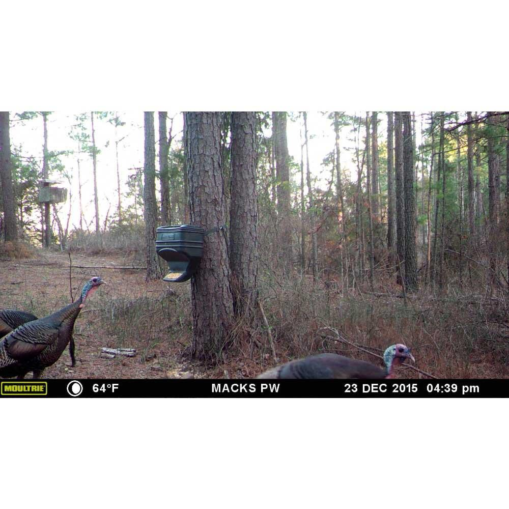 Moultrie Feed Station Gravity Deer Feeder_2.jpg