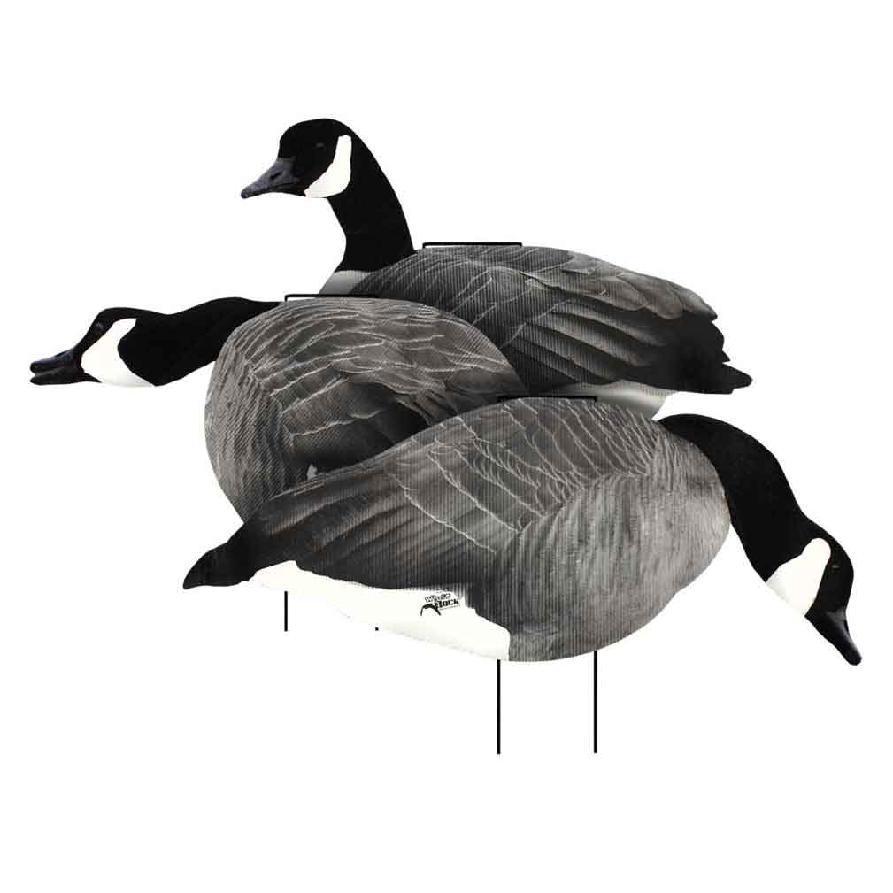 White Rock Decoys 2D Flocked Rockonomy Canada Goose Silhouettes, 12 Pack